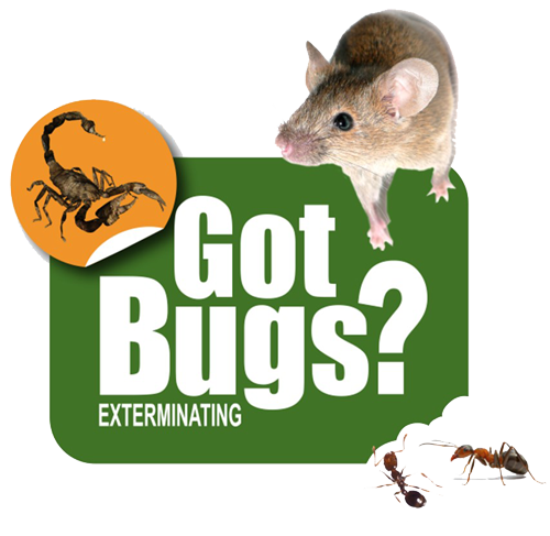 GotBugs Exterminating Tucson | Got Bugs? Exterminating: Pest Control in Tuscon, AZ